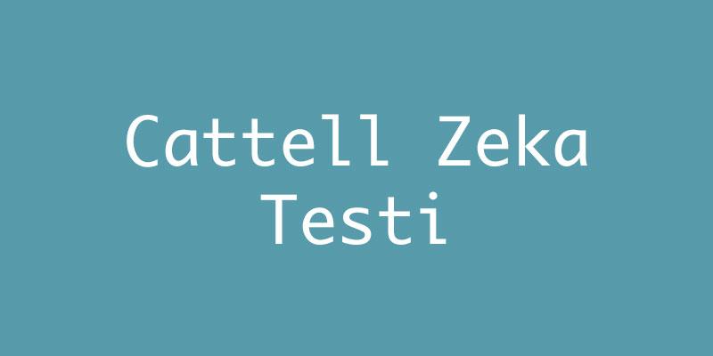 Cattell Zeka Testi