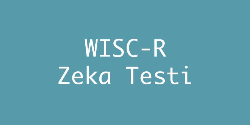WISC-R Zeka Testi